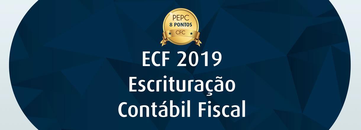 [ECF 2019: Atenção aos prazos de entrega e orientações]